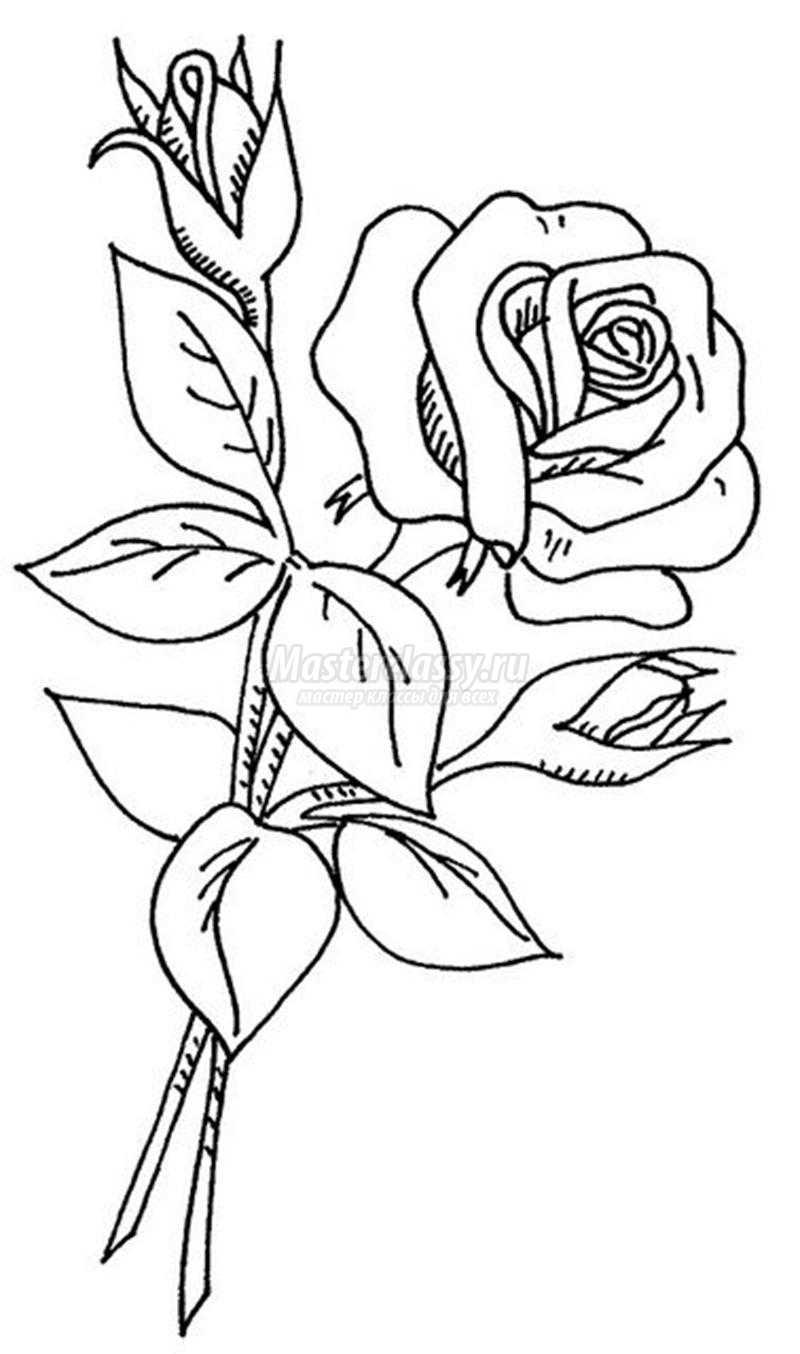 One Line Ascii Art Rose : Вышивка лентами для начинающих quot Веточка розы из атласной