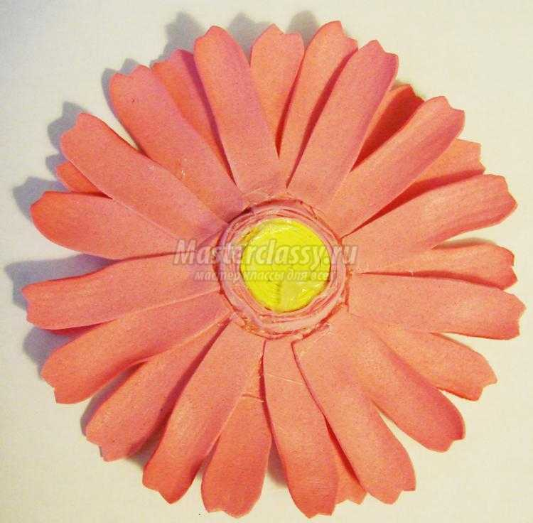 Фото гербера розовая